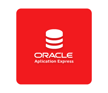 Oracle APEX Developer